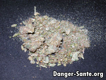 Danger Cannabis Couper