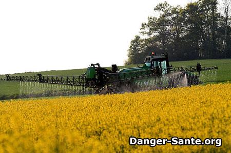 effets des pesticides
